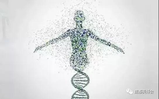 基因检测企业向下游聚集.jpg